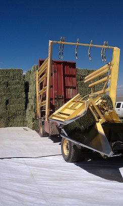 Anderson Hay Timothy Hay Bales being Stacked