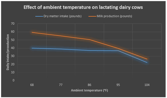 Effect of ambient temperature on lactating dairy cows