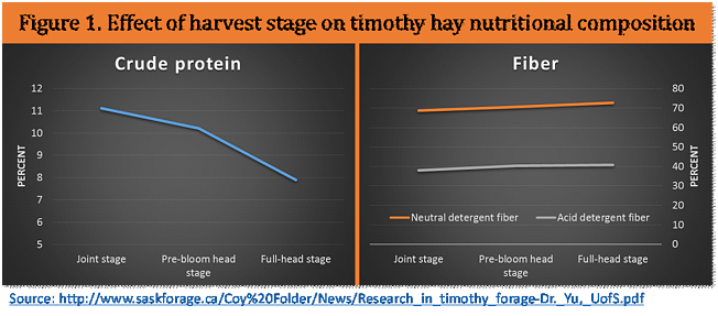Effect of harvest stage on timothy hay nutritional composition