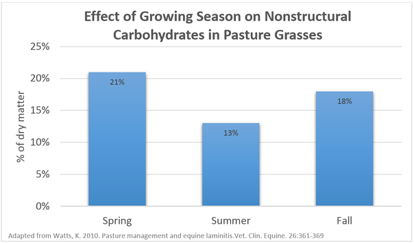 Grass Hay Carbohydrate Values by Season