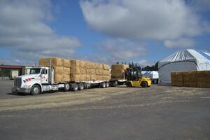 Straw unloaded from incoming truck at processing plant in Aurora, Oregon