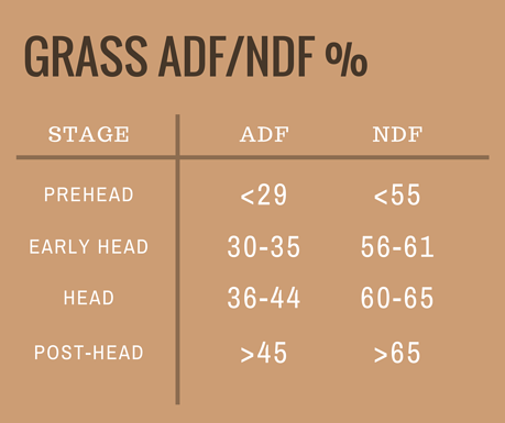 Grass_ADF-NDF_-1.png