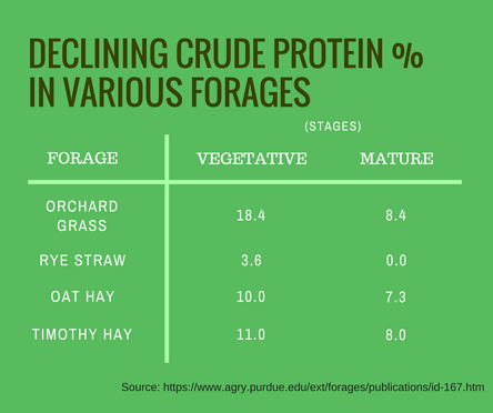 crude_protein_in_various_forages.png